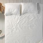A megosztás kultúrája – Ki aludt az ágyacskámban?