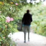 Milyen az út vége? – Riport a Hospice-házban