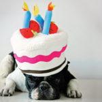 Füled érjen bokáig! – Miért fontos, hogy ünnepeljünk?