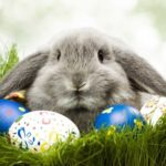 Mikor mondd el az igazat a gyereknek a húsvéti nyúlról?