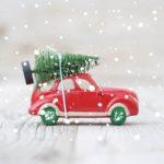 Karácsonyfa-kisokos fenyővásárlás előtt állóknak