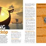 024_nez1706_1_viking.jpg