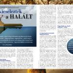 030_nez1706_1_halal.jpg