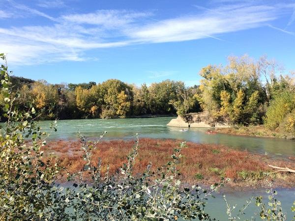 A Tevere folyó