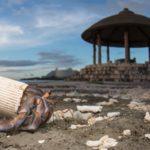 Szívfacsaró képeken az élővilág és a műanyag túl szoros kapcsolata