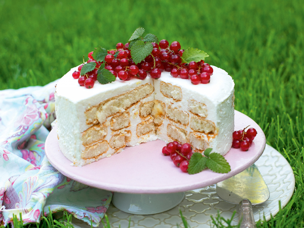 tejfölös babapiskóta-torta