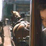 5 film a 75. Velencei Filmfesztiválról, amit legszívesebben most azonnal megnéznénk