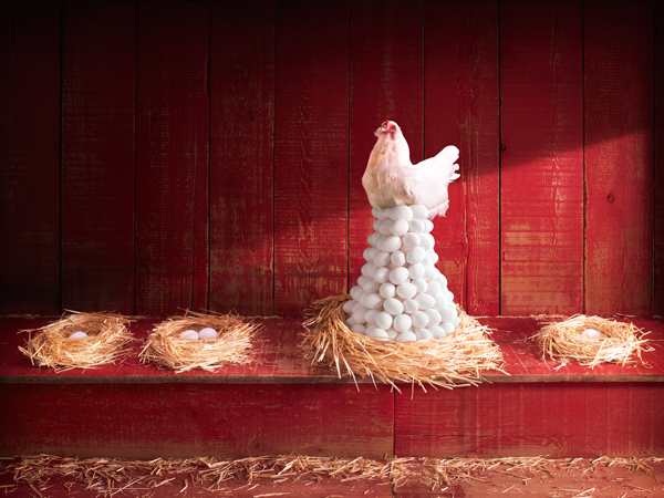 A white hen sits atop a huge nest of eggs in a red hen house.  The surrounding nest have only one or two eggs.